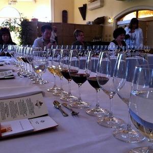 Wine Class Glasses
