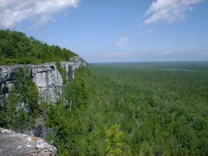 A tiny piece of the Niagara Escarpment