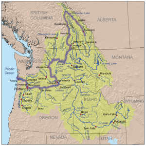Map of the Columbia River watershed, with the Columbia River Highlighted. Map via the USGS, modified by Kmusser, via Wikimedia Commons