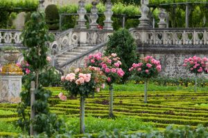 Kitchen garden at the Château de Villandry