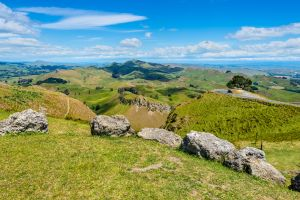 Greywacke boulders on Te Mata Peak (Hawke's Bay, New Zealand)