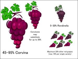 The basic blend of Valpolicella